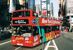 Double decker Gray Line buses