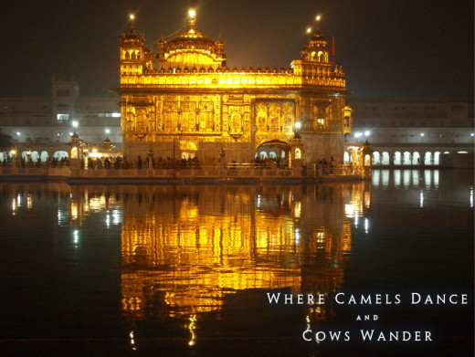 Trip to India. Golden Temple of Amritsar. Photo: Adam Taylor