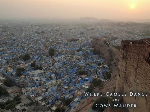 Trip to India. Jodhpur. Photo: Adam Taylor Smith